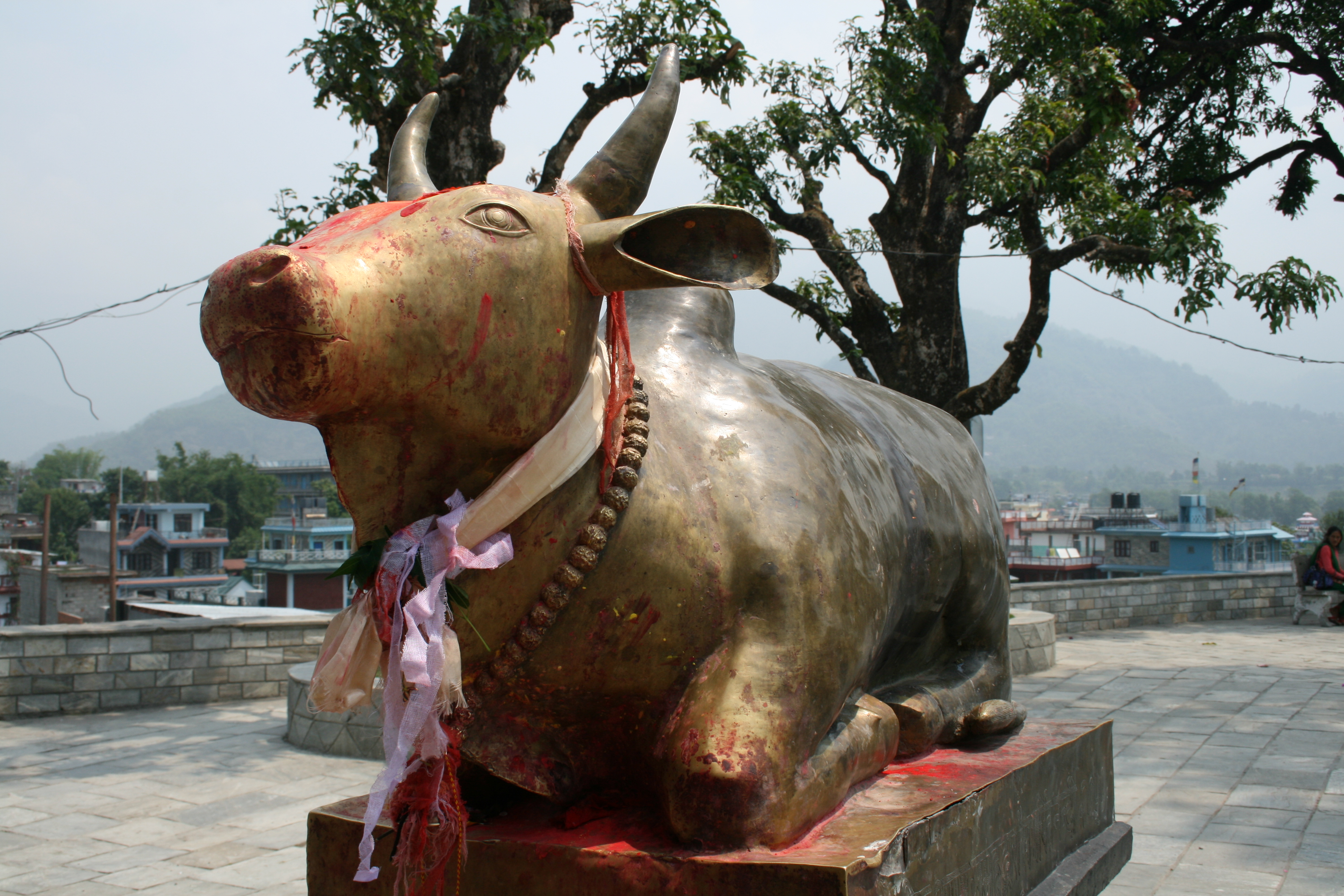 Bull Temple, Pokhara