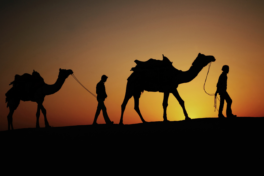 Jaisalmer India November They Walk Together Find A Place Spend The Night At Dunes November