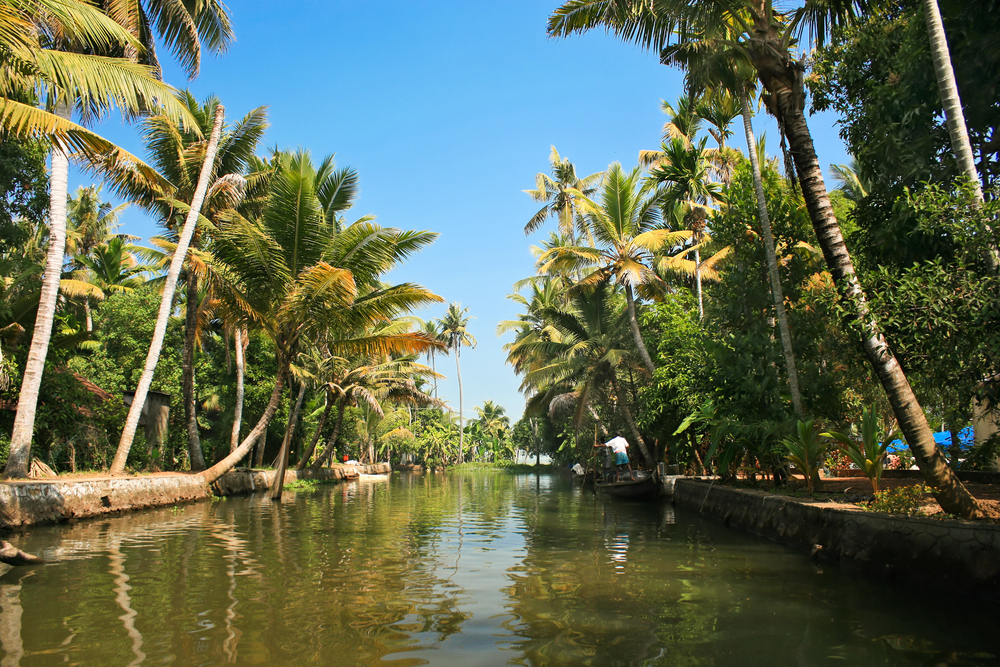 Backwaters, Kumarakom